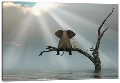 Elephant And Dog Are Sitting On A Tree Fleeing A Flood Canvas Art Print