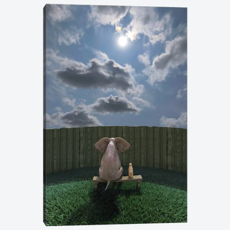 Elephant And Dog Sit By The Fence And Look At The Sky Canvas Print #MII218} by Mike Kiev Art Print