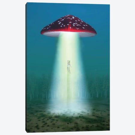 Flying Hallucinogenic Mushroom Kidnaps A Woman At Night Canvas Print #MII219} by Mike Kiev Art Print