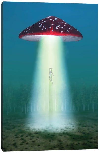 Flying Hallucinogenic Mushroom Kidnaps A Woman At Night Canvas Art Print