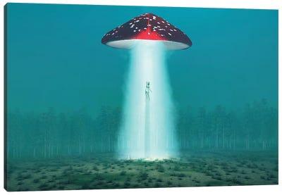 Flying Hallucinogenic Mushroom Kidnaps A Woman At Night II Canvas Art Print