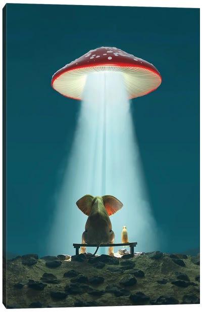 Elephant And Dog Look At A Flying Mushroom Canvas Art Print