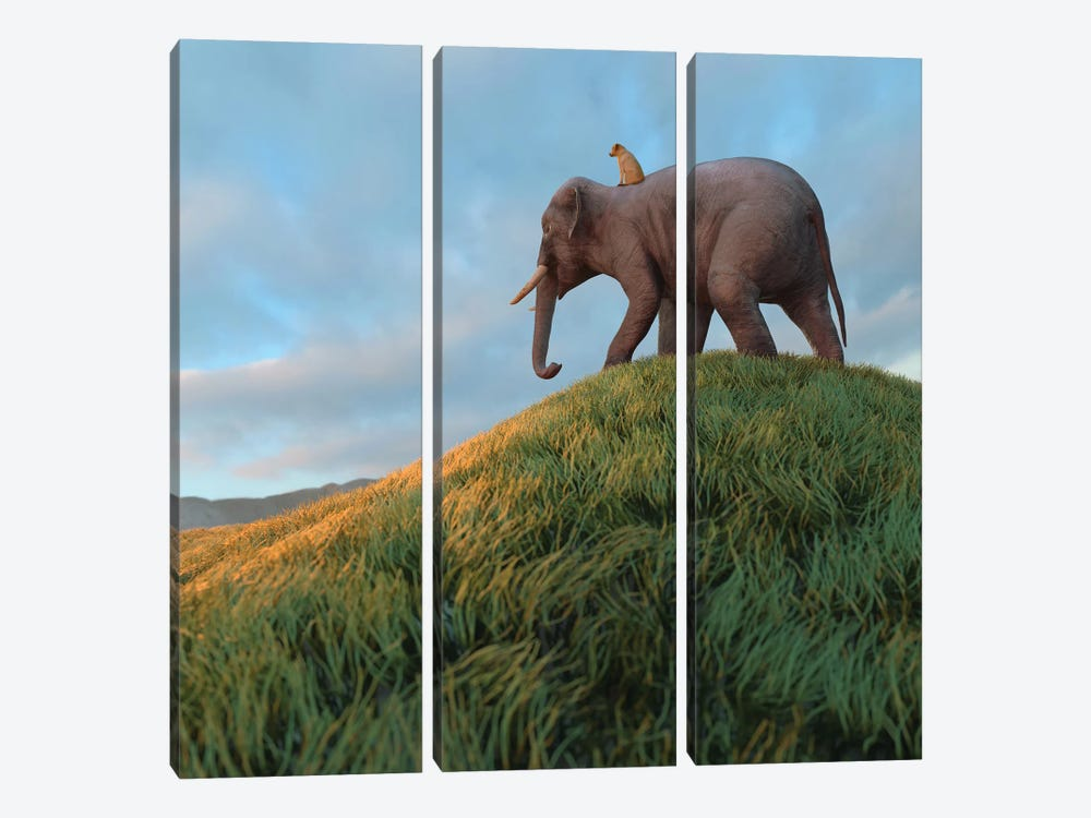 Dog Rides An Elephant Across The Field by Mike Kiev 3-piece Canvas Artwork