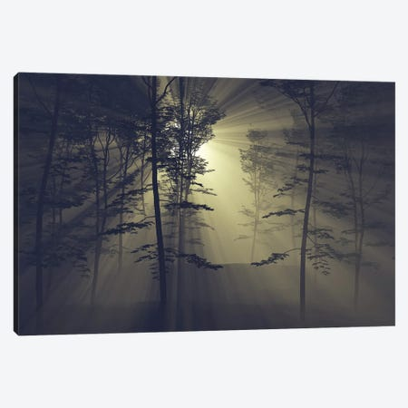 Rays Of The Sun In A Foggy Forest Canvas Print #MII238} by Mike Kiev Art Print