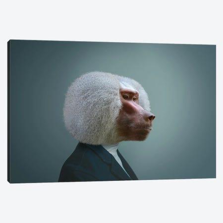 Monkey Man Canvas Print #MII270} by Mike Kiev Canvas Print