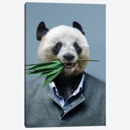 Panda Man Canvas Print #MII271} by Mike Kiev Art Print