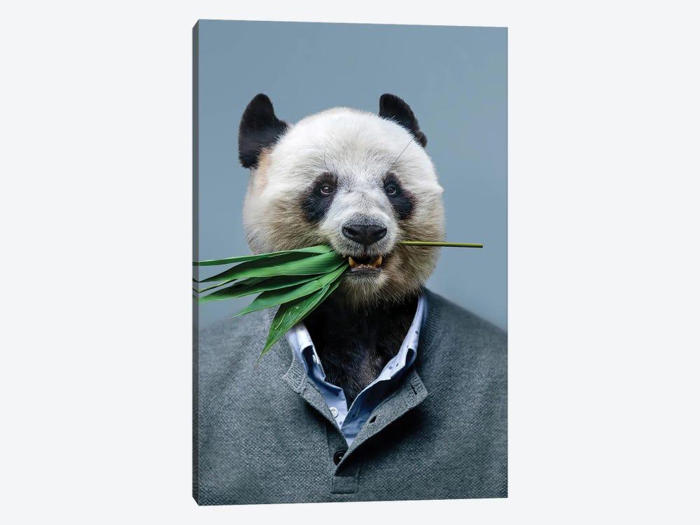 Panda Man by Mike Kiev 1-piece Canvas Print