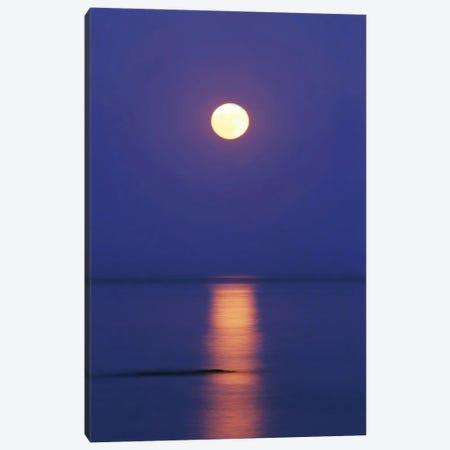 Full Moon Over The Sea Canvas Print #MII277} by Mike Kiev Canvas Artwork