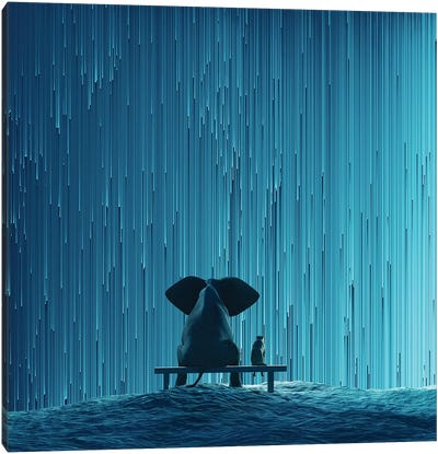 Elephant And Dog Looking At Star Rain Canvas Art Print