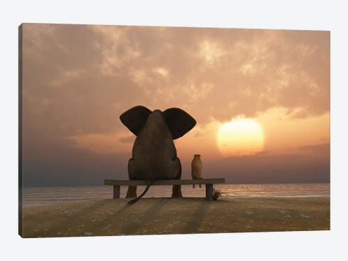 Elephant And Dog Sit On A Summer Beach At Sunset C Mike Kiev Icanvas