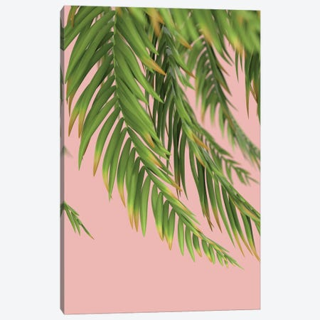 Palm Branch On A Peach Background I Vertical 3-Piece Canvas #MII68} by Mike Kiev Canvas Art Print