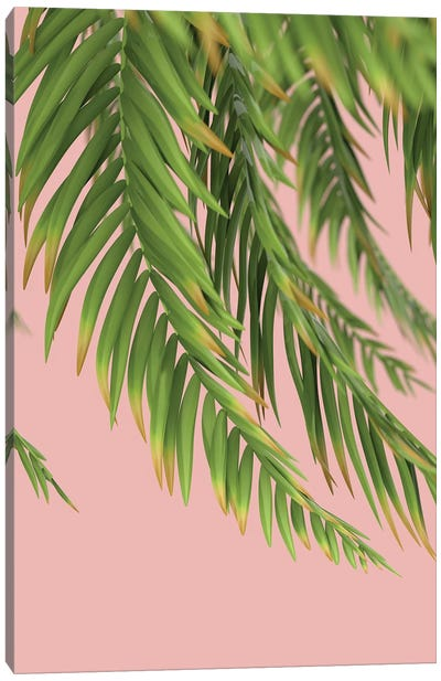 Palm Branch On A Peach Background I Vertical Canvas Art Print