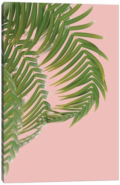 Palm Branch On A Peach Background II Vertical Canvas Art Print