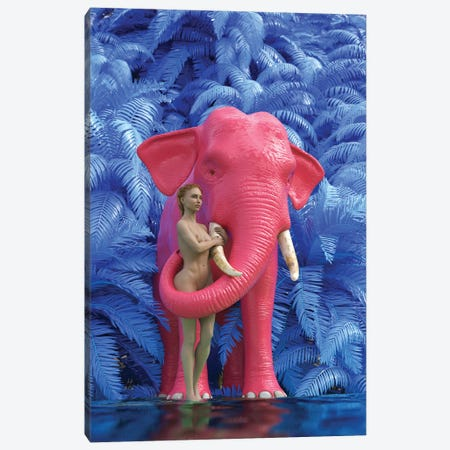 Woman Bathes A Red Elephant Canvas Print #MII81} by Mike Kiev Art Print