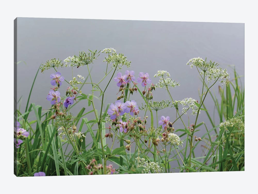 wet wild flowers by the lake by Mike Kiev 1-piece Canvas Art