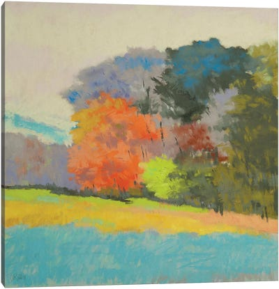 Fox Farm Woods Canvas Art Print