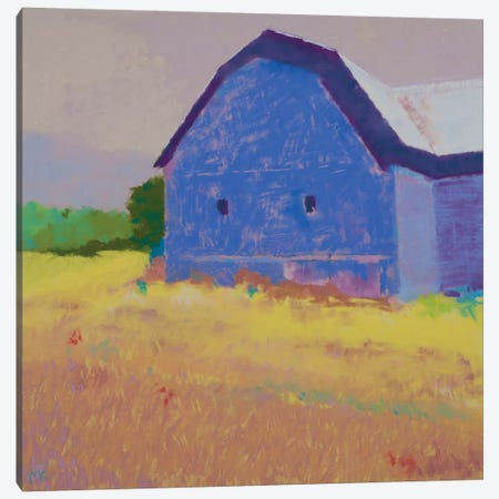 Summer Field Canvas Print #MIK5} by Mike Kelly Canvas Print