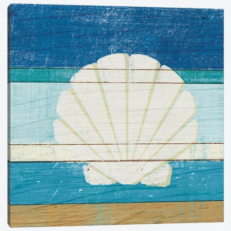 Beachscape Shell Canvas Print #MIM3} by Michael Mullan Canvas Artwork