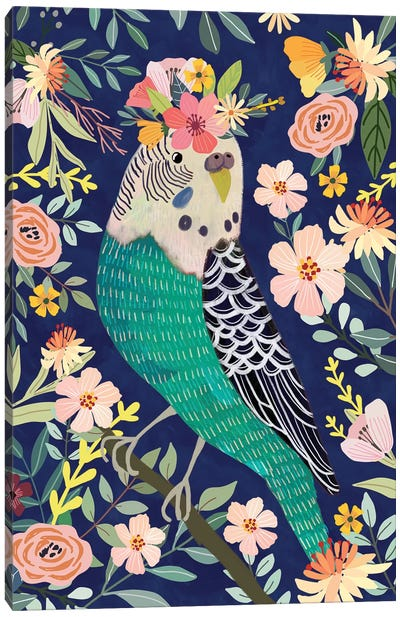 Parakeet Canvas Art Print