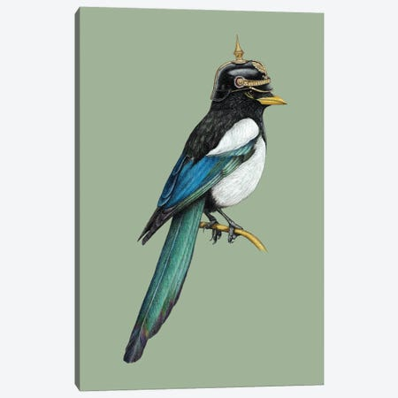 Yellow-Billed Magpie Canvas Print #MIV123} by Mikhail Vedernikov Canvas Wall Art