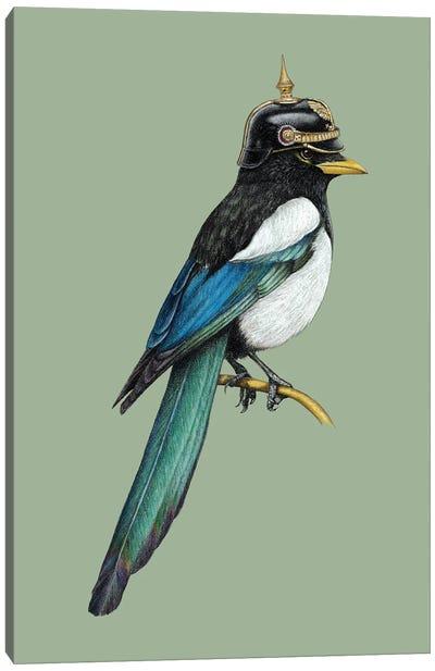 Yellow-Billed Magpie Canvas Art Print
