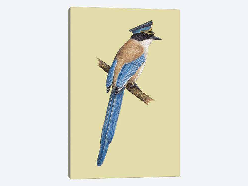 Azure-Winged Magpie by Mikhail Vedernikov 1-piece Canvas Wall Art