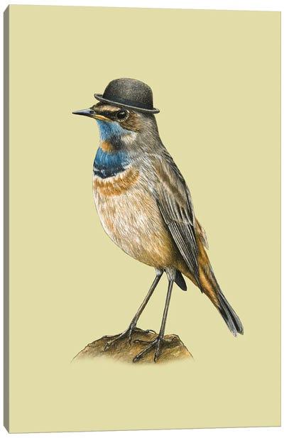 Bluethroat Canvas Art Print