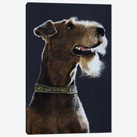 Airedale Terrier Canvas Print #MIV1} by Mikhail Vedernikov Canvas Art