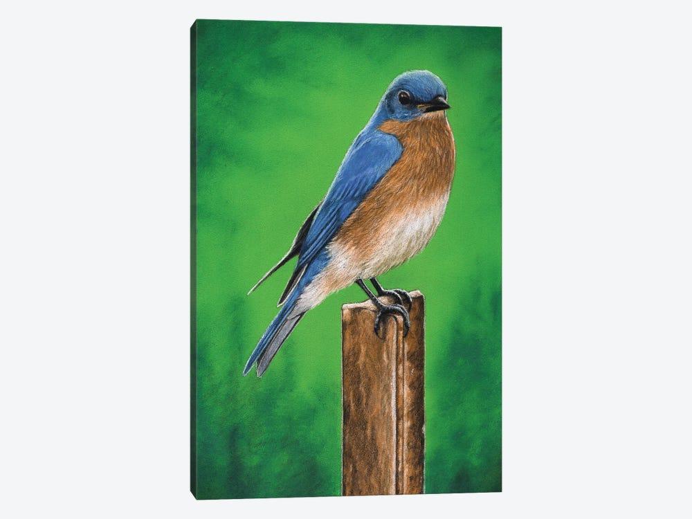 Eastern Bluebird by Mikhail Vedernikov 1-piece Canvas Art