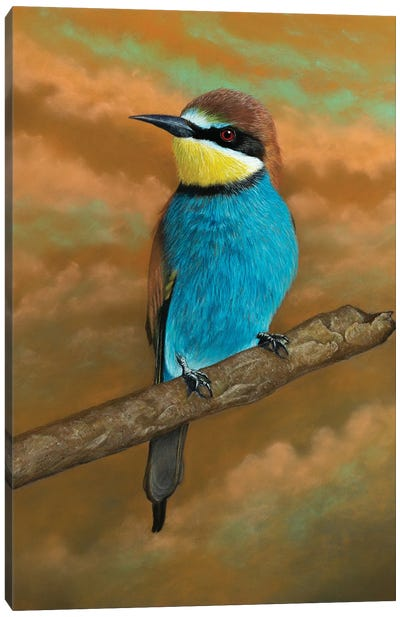 European Bee-Eater Canvas Art Print