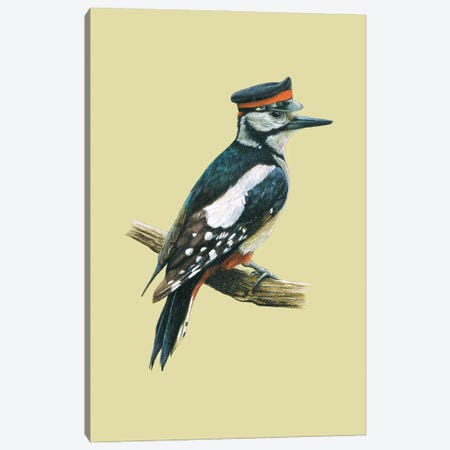 Great Spotted Woodpecker Canvas Print #MIV45} by Mikhail Vedernikov Canvas Art Print