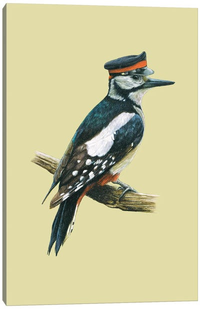 Great Spotted Woodpecker Canvas Art Print