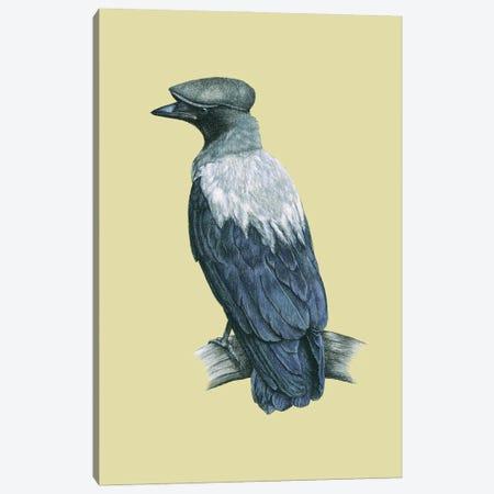 Hooded Crow Canvas Print #MIV51} by Mikhail Vedernikov Canvas Art Print