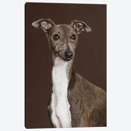 Italian Greyhound Canvas Print #MIV53} by Mikhail Vedernikov Canvas Art Print