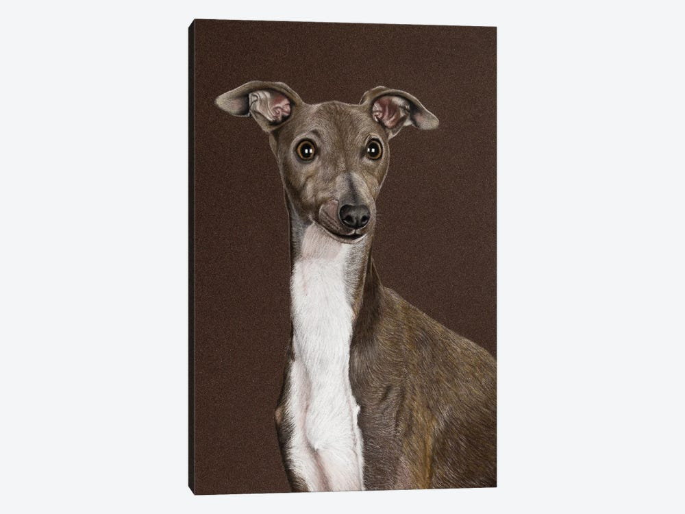 Italian Greyhound by Mikhail Vedernikov 1-piece Canvas Art Print