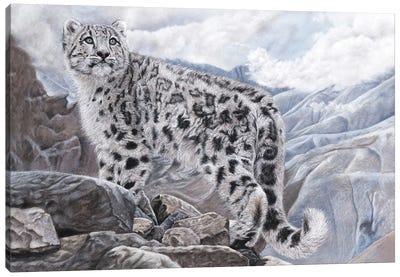 Snow Leopard Canvas Art Print