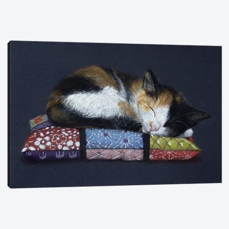Sweet Sleep Canvas Print #MIV81} by Mikhail Vedernikov Canvas Wall Art