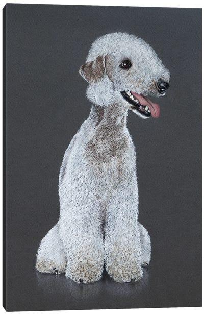 Bedlington Terrier Canvas Art Print