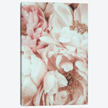Blossom Mix Canvas Print #MIZ13} by Magda Izzard Art Print