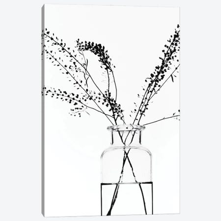 Bottle With Branches I Canvas Print #MIZ15} by Magda Izzard Canvas Wall Art