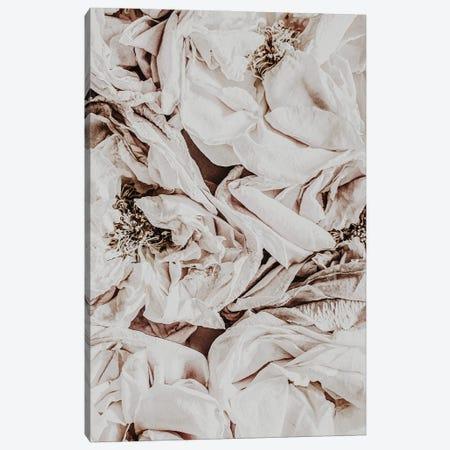 Silk Roses Canvas Print #MIZ182} by Magda Izzard Canvas Art
