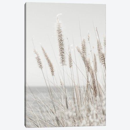 Grass Canvas Print #MIZ46} by Magda Izzard Art Print