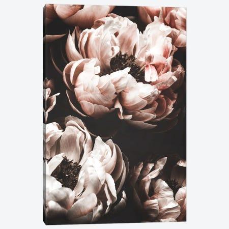 Peony Garden Canvas Print #MIZ68} by Magda Izzard Canvas Wall Art