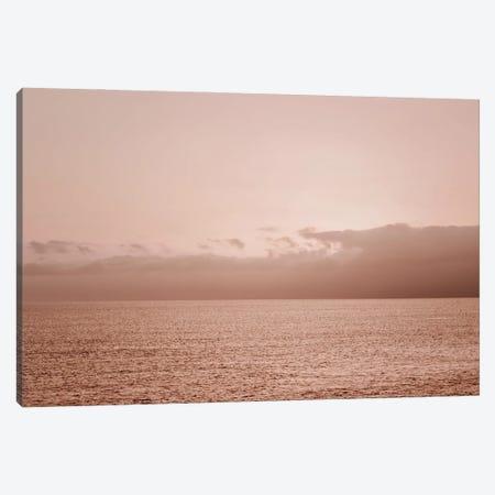 Pink Ocean Canvas Print #MIZ69} by Magda Izzard Canvas Artwork