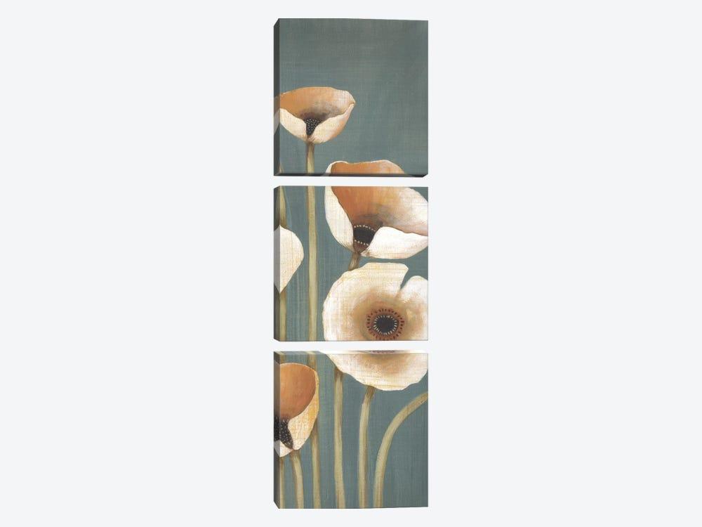 Buttercup I by MAJA 3-piece Canvas Artwork