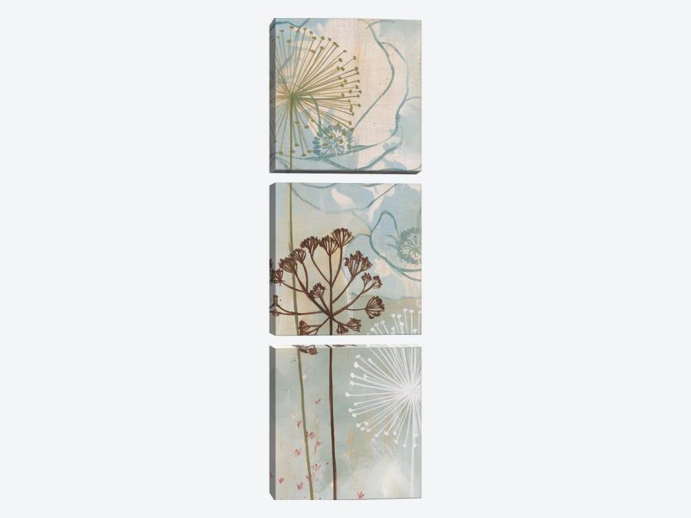Luminosa by MAJA 3-piece Canvas Art Print