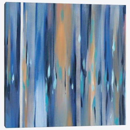 Winter Rain Canvas Print #MJA50} by MAJA Canvas Art