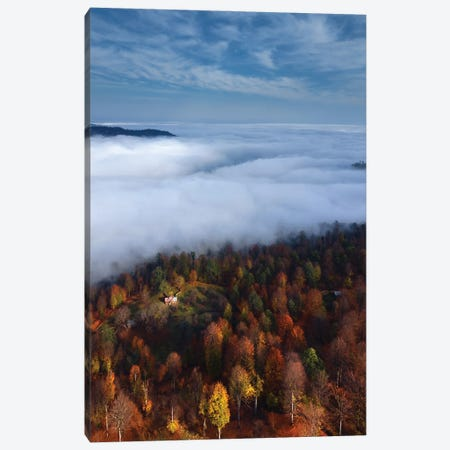 Foggy Forest Panoramic View Canvas Print #MJB3} by Majid Behzad Canvas Wall Art