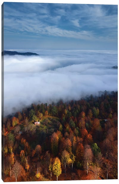 Foggy Forest Panoramic View Canvas Art Print