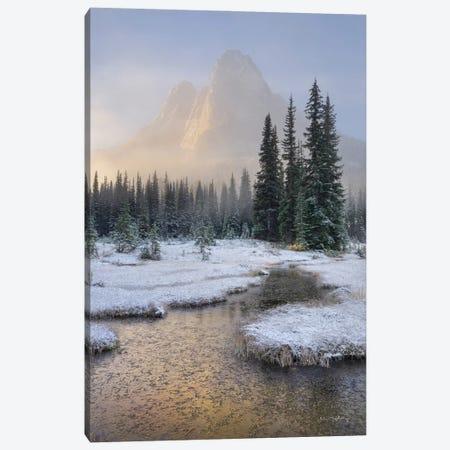 Bell Mountain North Cascades I Canvas Print #MJC116} by Alan Majchrowicz Canvas Art Print